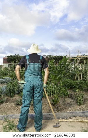 rear view of a farmer looking at his urban vegetable garden standing wearing a hat and a dickey holding a hoeing on his right hand - stock photo