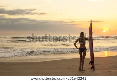 Rear view of beautiful sexy young woman surfer girl in bikini with red surfboard on a beach at sunset or sunrise - stock photo