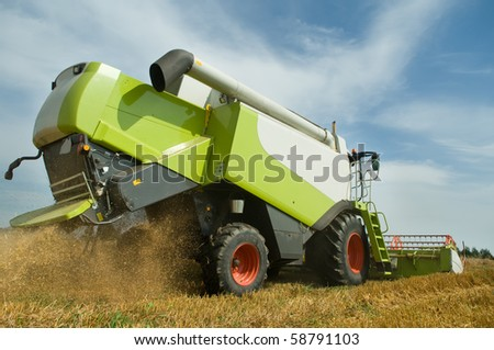 Rear view of green working harvesting combine in the cereals field - stock photo