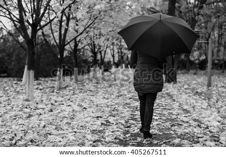 Rear view of single woman in thick winter coat holding umbrella while walking along path with fallen leaves and neat rows of trees