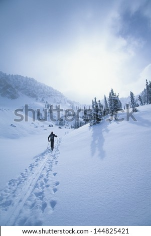Rear view of skier walking through snow mountains - stock photo