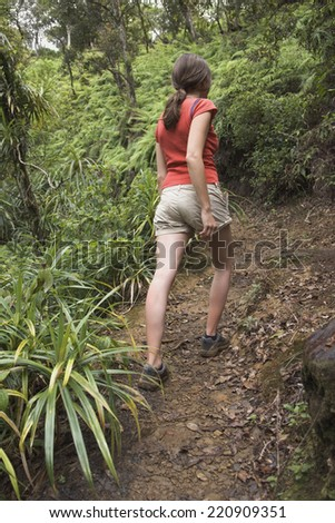 Rear view of woman hiking in jungle - stock photo