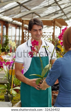 rear view of woman shopping in flower shop - stock photo