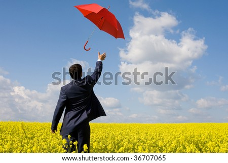Rear view of young businessman stretching arm towards red umbrella in flower field - stock photo