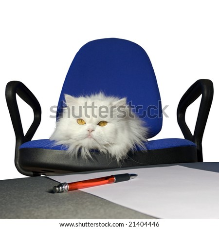 Receive order to dismiss . Sign of order . Isolate - stock photo