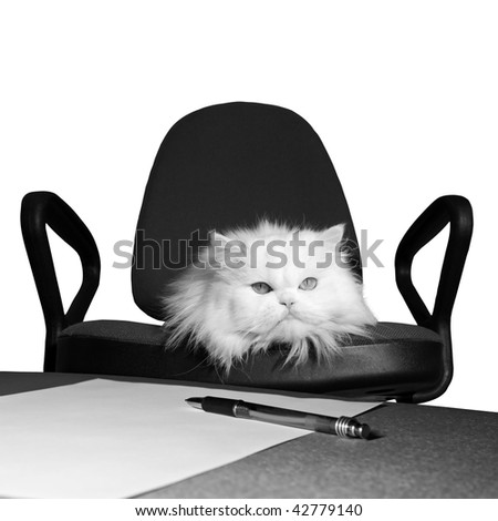 Receive order to dismiss . Sign of order . Isolate. Black and white photo - stock photo