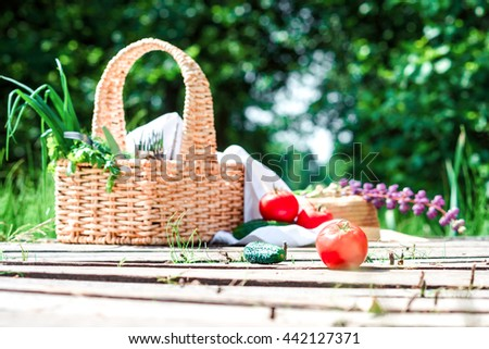 Rectangle basket with green vegetables and tableware, red tomatoes and green cucumbers on the plank footway among the grass.