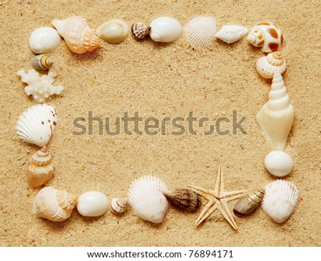 rectangle frame of small assorted seashells,starfish and coral