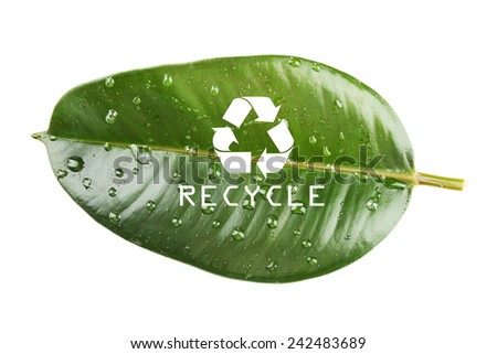 Recycle symbol on green leaf, recycling concept - stock photo