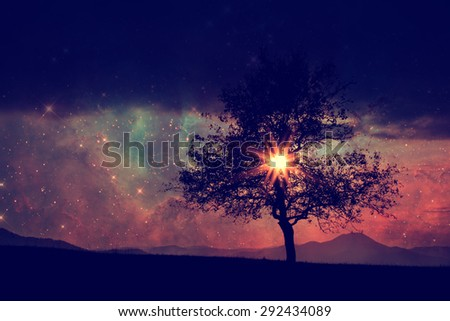 red alien landscape with alone tree silhouette - elements of this image are furnished by NASA - stock photo