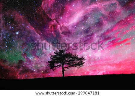 red alien landscape with alone tree silhouette over the night sky with many stars - elements of this image are furnished by NASA - stock photo