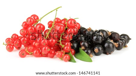Red and black currant isolated on white - stock photo