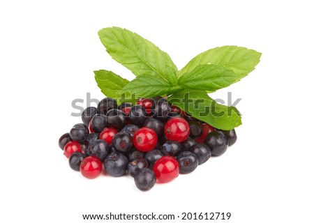red and black currants isolated on white background