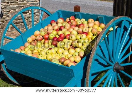 Red and green apples sit in an old fashioned colonial style apple cart.
