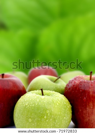 Red and green apples with water drops on green background - stock photo