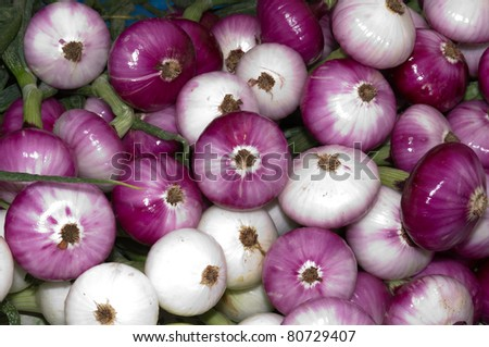 Red and white onions freshly harvested at the farmer's market - stock photo