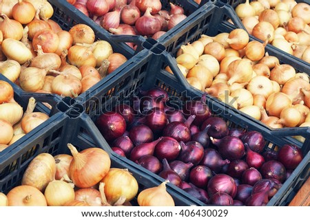 Red and white onions in boxes