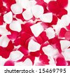 Red and White Rose Petals Background - stock photo