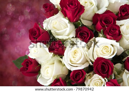 Red and White roses as a background - stock photo