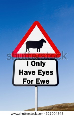 Red and white triangular road sign with an I Only Have Eyes For Ewe play on words concept against a partly cloudy sky background