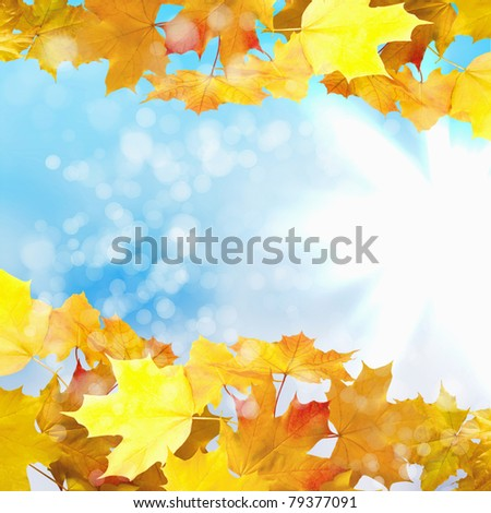 Red and yellow leaves against a bright blue sky. Bokeh effect. - stock photo