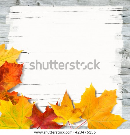 Red and yellow maple leaves on white painted old wooden background; Autumn promotion; Autumnal motif - stock photo