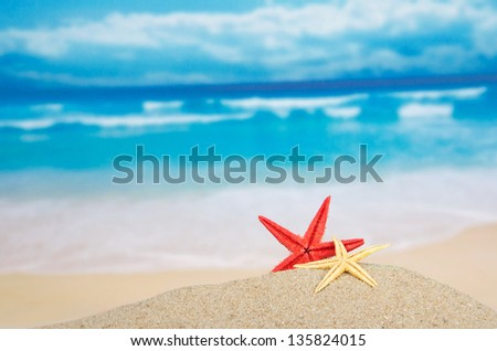 Red and yellow starfishes on the beautiful sea coast - stock photo