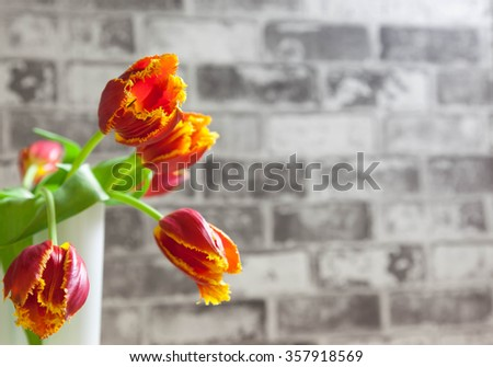 Red and Yellow tulips next to brick wall - stock photo