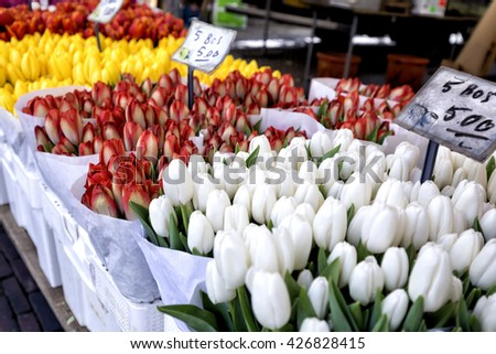 Red and yellow white tulips for sale in a market in Delft - stock photo