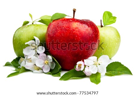 Red Apple in Front of Two Green Apples with flowers, Leaf and water droplets on a white background - stock photo