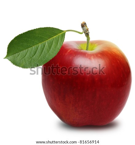 Red apple isolated - stock photo