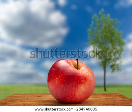 Red apple on outdoor sky and tree background - stock photo