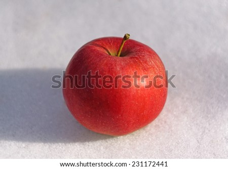 Red apple on white snow close-up                                - stock photo