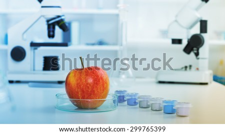 Red Apple to selection in Microbiological laboratory.Chemical Laboratory of the Food supply. - stock photo