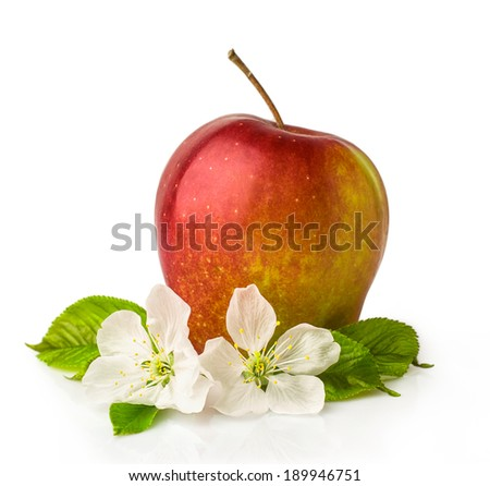 red apple with blossom isolated on white - stock photo