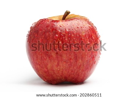 Red apple with water drops. - stock photo