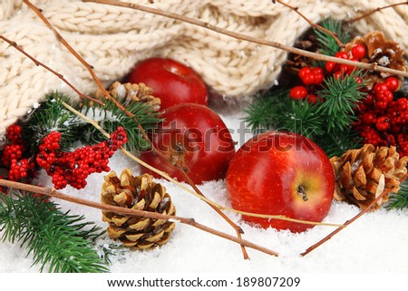 Red apples with fir branches and knitted scarf in snow close up - stock photo