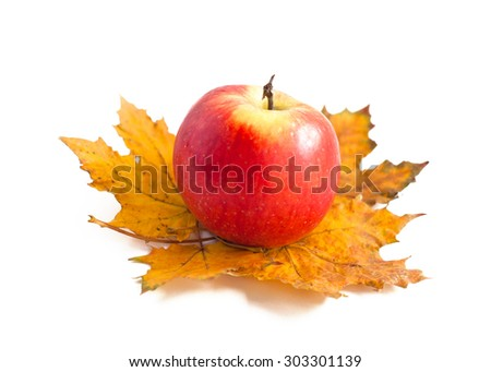 Red autumn apple at the fallen maple leaves on a white background - stock photo