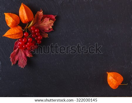 Red autumn berries and leaves on black slate background with place to text - stock photo