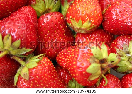Red background made of strawberries - Strawberry red fruit background - stock photo