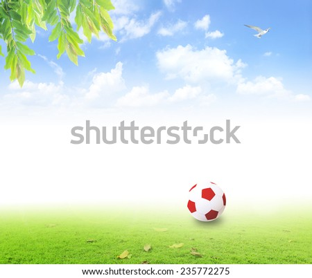 Red ball with green grass and beauty blue sky. - stock photo
