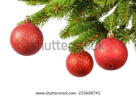 red balls hanged on the green spruce branches - stock photo