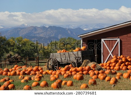 Red Barn and Pumpkins - stock photo