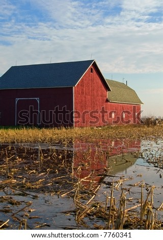 Red barn in a flooded field with reflection - stock photo