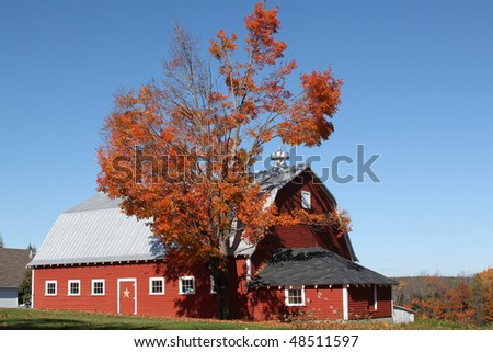 Red Barn with Fall Maple Tree - stock photo