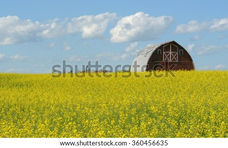 Red Barn, Yellow Field, Blue Sky - stock photo