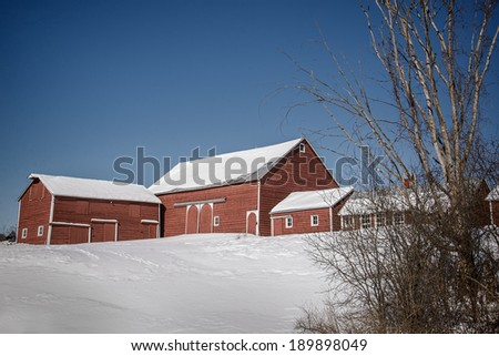 Red barns stand out against the blue sky and winter's snow in Princetown, New York.