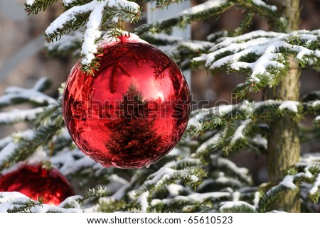 Red Bauble on Christmas Tree with Reflection - stock photo