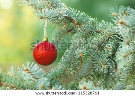 Red baubles on Christmas tree(xmas ball) - stock photo