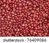 Red Bean Adzuki - Vigna Angularis - stock photo